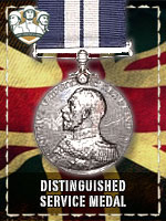 BAD - Distinguished Service Medal (Qtde: 1)