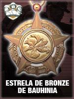 ASC - Estrela de Bronze de Bauhinia (Qtde: 1)