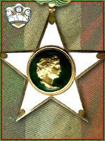 132ª - Stella al Merito di Guerra