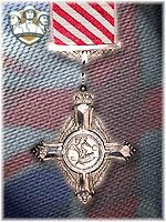 7th - Air Force Cross (Qtde: 1)