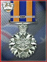 9th - Defense Service Medal (Qtde: 1)