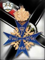 Medalhas AXIS Condecoração por Voto do Publico Gg1_TA_merite